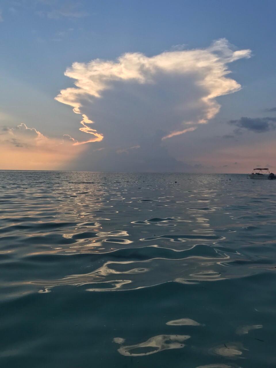 Night fishing thoddoo maldives ночная рыбалка мальдивы тодду