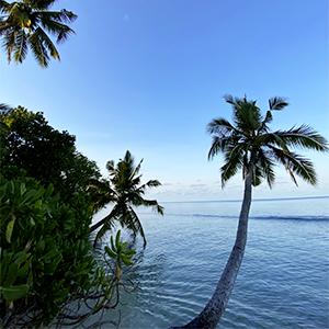 dive villa, Maldives island Thoddoo