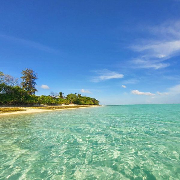 Dive Villa, Maldives, island Thoddoo